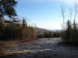 22122374 - Vacant lot for sale