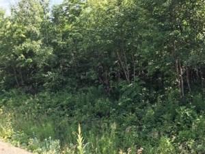 18235605 - Terrain vacant à vendre