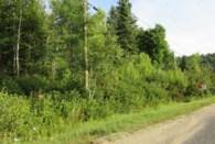 16123745 - Terrain vacant à vendre
