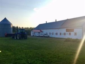 16056327 - Farm for sale