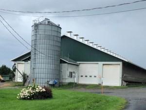 21016492 - Farm for sale