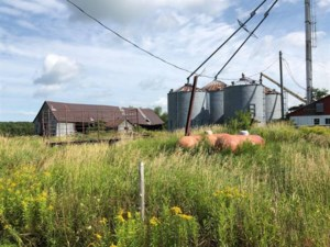 27497876 - Farm for sale