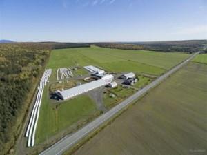 23166172 - Farm for sale