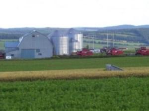 17171481 - Farm for sale