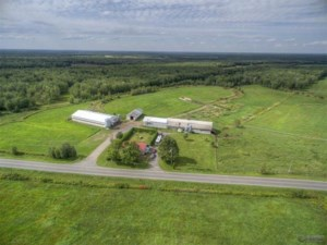 24764132 - Farm for sale