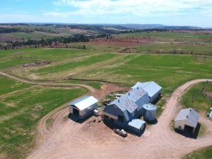26532225 - Farm for sale
