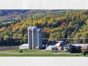 16113318 - Farm for sale