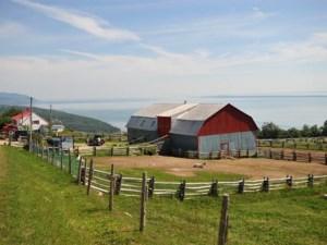 10915024 - Farm for sale