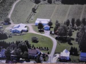 22822474 - Hobby Farm for sale