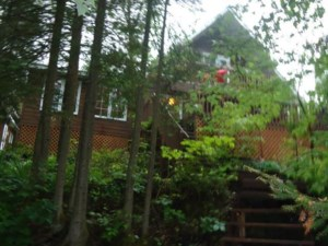 23619997 - One-and-a-half-storey house for sale