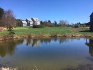 17669726 - Hobby Farm for sale