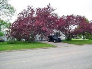 23353170 - Mobile home for sale