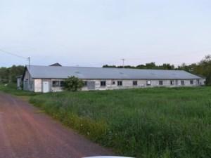 11115274 - Hobby Farm for sale