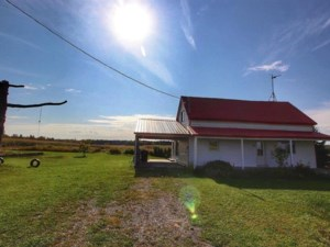 13788463 - Hobby Farm for sale