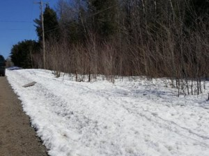 16533241 - Vacant lot for sale