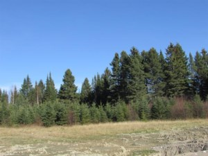 10554453 - Vacant lot for sale