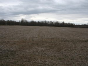 21652605 - Vacant lot for sale