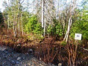 9552688 - Vacant lot for sale
