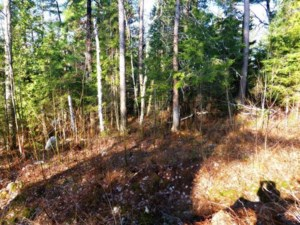 20477602 - Vacant lot for sale