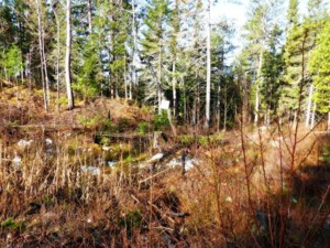 23852591 - Vacant lot for sale