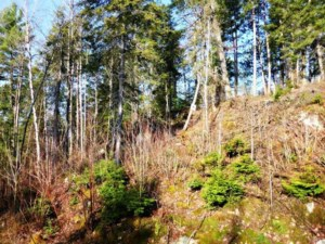 26867381 - Vacant lot for sale