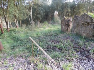 Land / Lot for sale