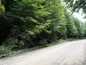 28814518 - Vacant lot for sale