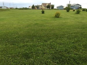 14110602 - Vacant lot for sale