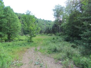 10321197 - Vacant lot for sale