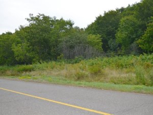 21672398 - Vacant lot for sale