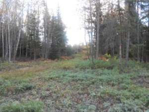 26046825 - Vacant lot for sale