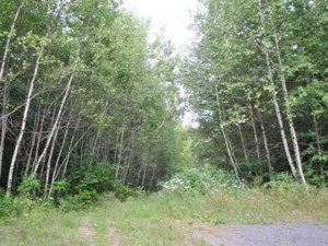 21420981 - Vacant lot for sale