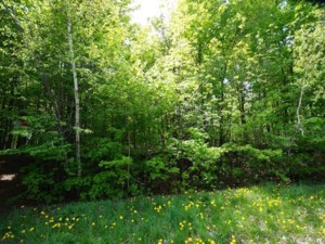 23383959 - Vacant lot for sale