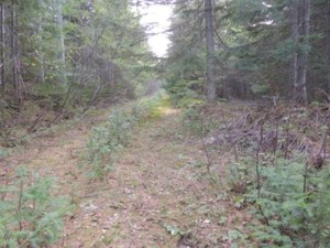 9960433 - Vacant lot for sale