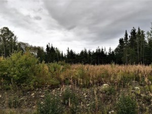 16365736 - Vacant lot for sale