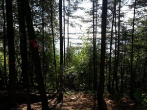 25067578 - Vacant lot for sale
