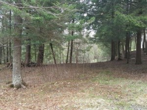 11137581 - Vacant lot for sale