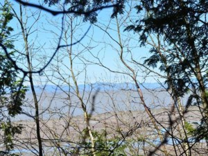 10874414 - Vacant lot for sale