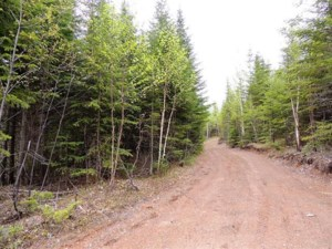 14651289 - Vacant lot for sale