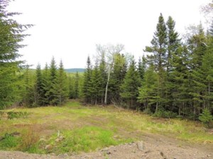 23724591 - Vacant lot for sale