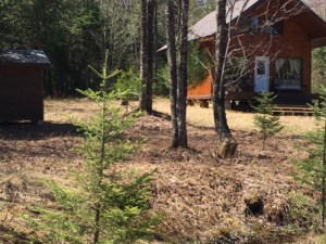 Wood lot for sale