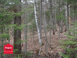 20316284 - Vacant lot for sale