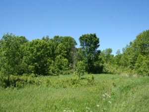 9022000 - Vacant lot for sale