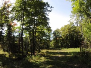 12238671 - Vacant lot for sale