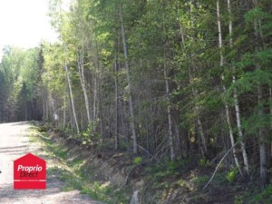 11234328 - Vacant lot for sale
