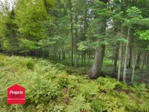 11450328 - Vacant lot for sale