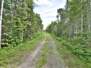 27675711 - Vacant lot for sale