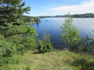 24264136 - Vacant lot for sale