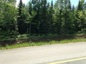 14156826 - Vacant lot for sale