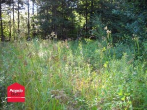 12022571 - Vacant lot for sale